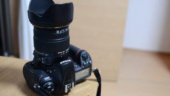 【初心者~中級者の方におススメ!】今さらながらにコストパフォーマンスが凄いSIGMA 17-50mm F2.8 EX DC OS HSM を紹介してみる